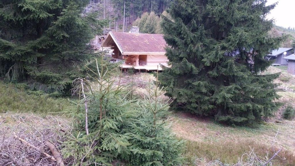 nordic-camp-gruenbach